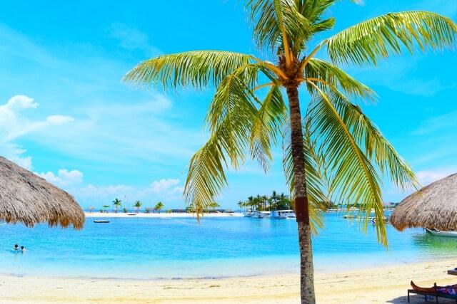リゾートのビーチ