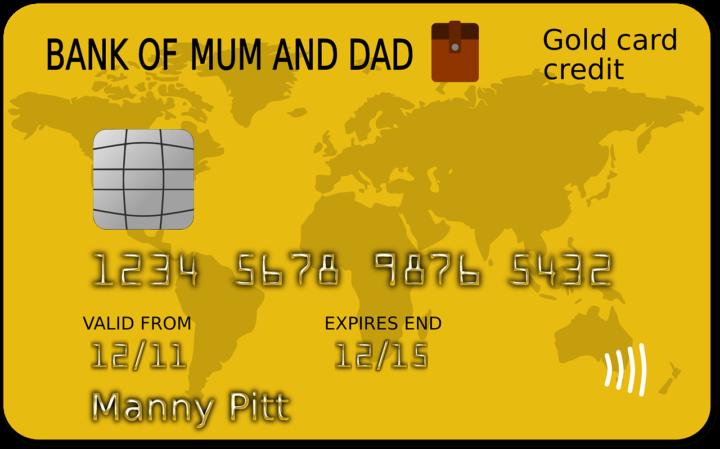 2ちゃんねるではどのランクのカードが人気なの?