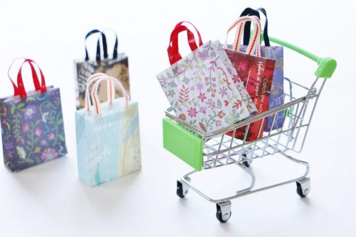 ショッピング枠の特徴と支払い方